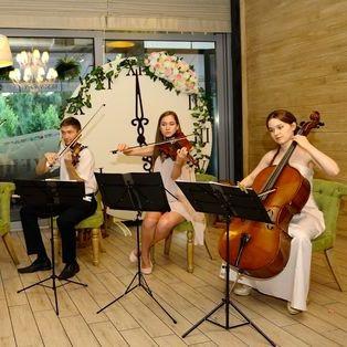 Coffee Music Quartet - Ансамбль , Киев,  Струнный квартет, Киев Инструментальный ансамбль, Киев