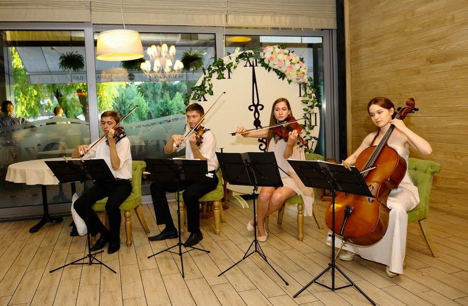 Coffee Music Quartet - Ансамбль  - Киев - Киевская область photo