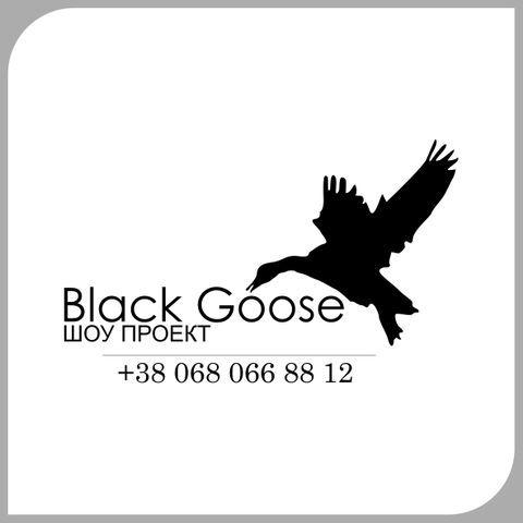 Black Goose Show -