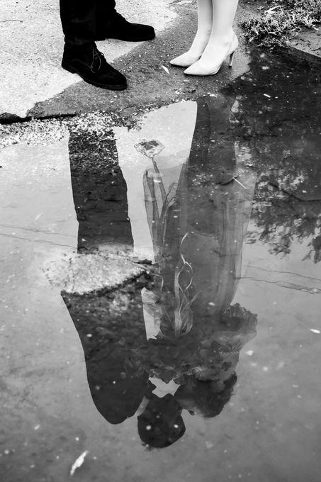 Светлана Малинина - Фотограф  - Харьков - Харьковская область photo