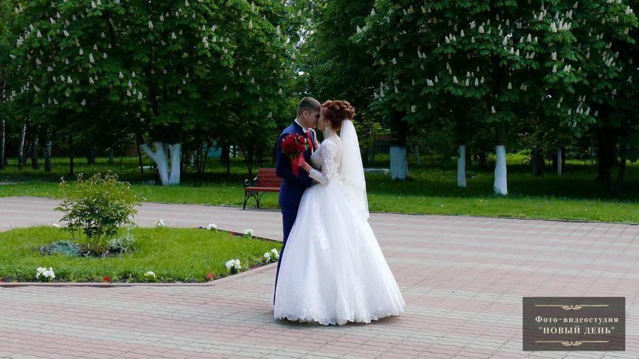 Артём Руденко - Фотограф Видеооператор  - Изюм - Харьковская область photo