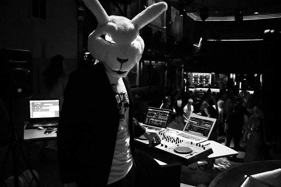 DJ Mad Rabbit - Ди-джей Аниматор  - Львов - Львовская область photo