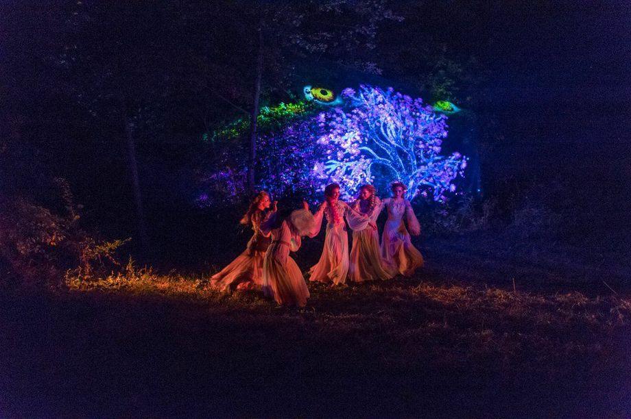 SuperBallet - Танцор  - Киев - Киевская область photo