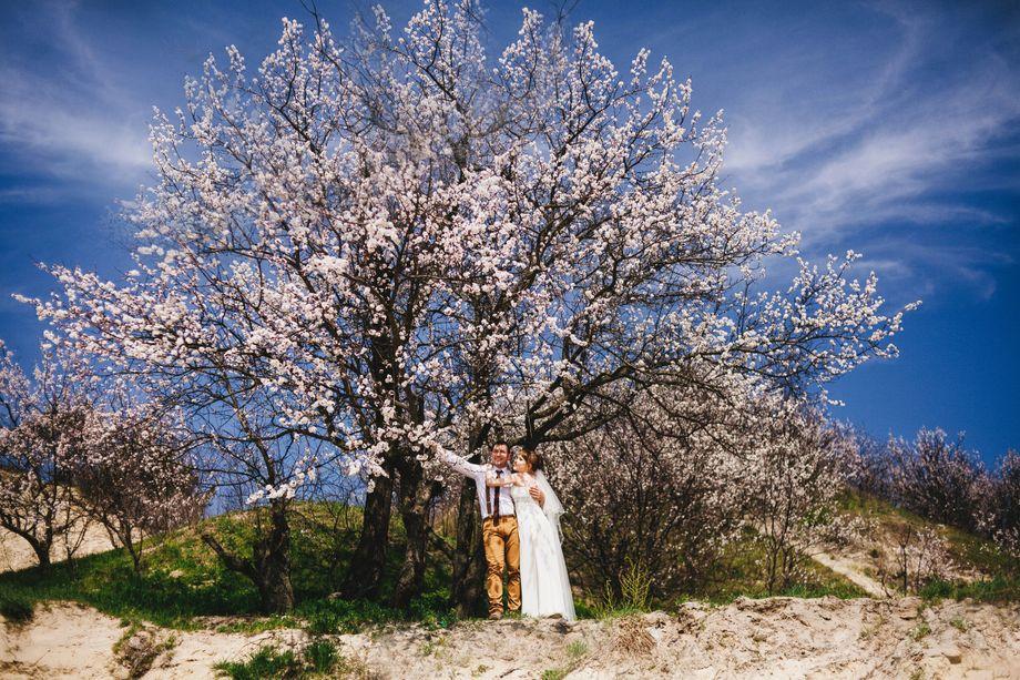 Травина Марина - Фотограф  - Киев - Киевская область photo