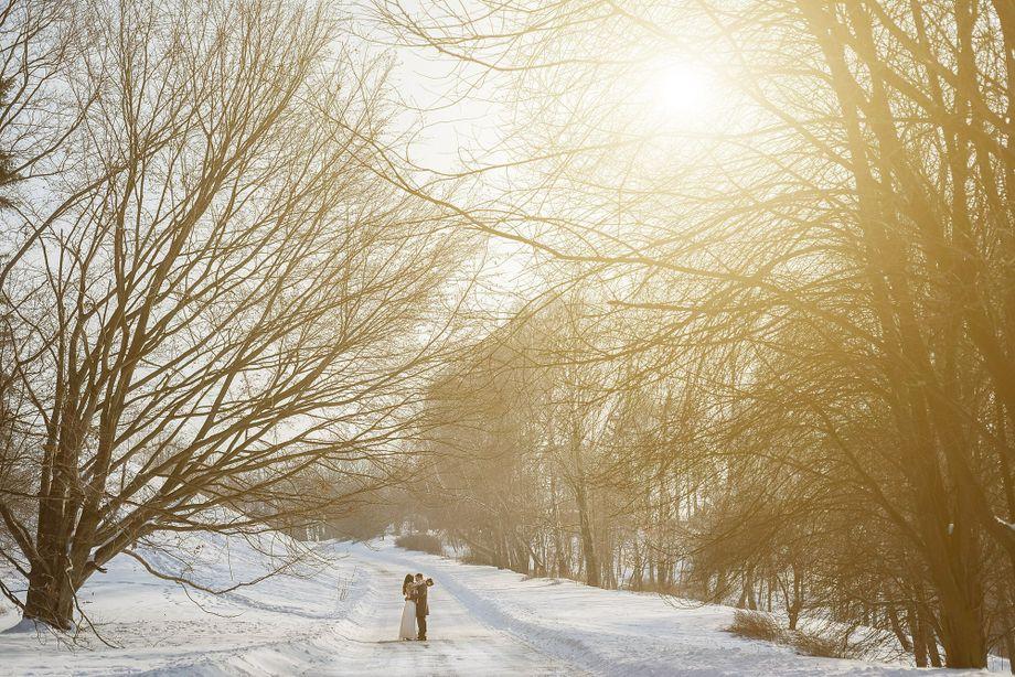 Василевский Сергей - Фотограф  - Киев - Киевская область photo