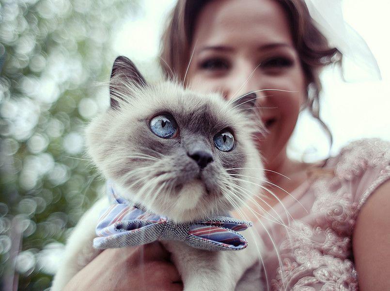 Артем Кулаксыз - Фотограф Видеооператор  - Одесса - Одесская область photo
