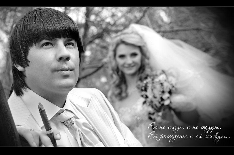 StudioRoma - Фотограф Видеооператор  - Запорожье - Запорожская область photo