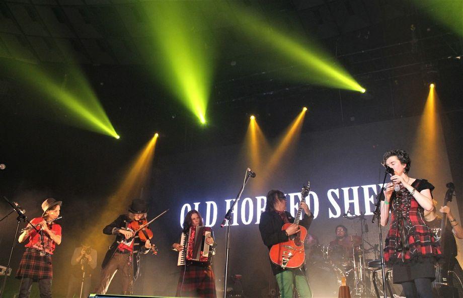 OLd Horned Sheep - Музыкальная группа  - Санкт-Петербург - Санкт-Петербург photo