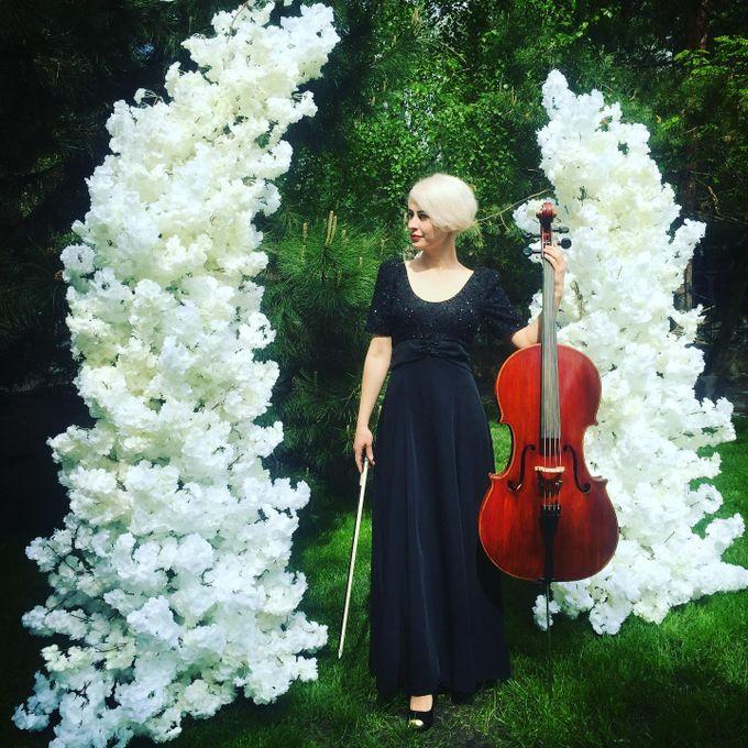 Lady Cello - Музыкант-инструменталист  - Киев - Киевская область photo
