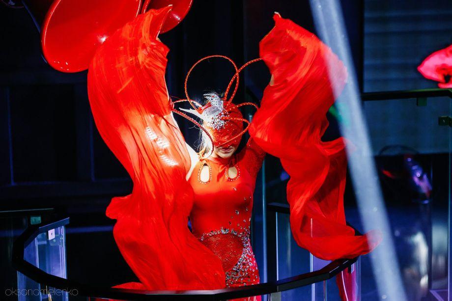StyleLynx show - Танцор  - Днепр - Днепропетровская область photo