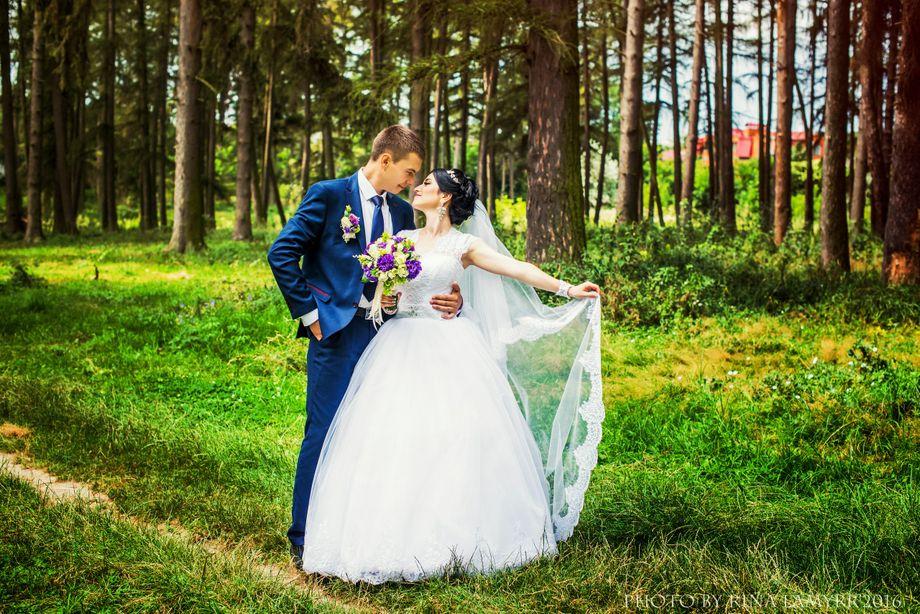 Марина Бакалейник - Фотограф Видеооператор  - Винница - Винницкая область photo
