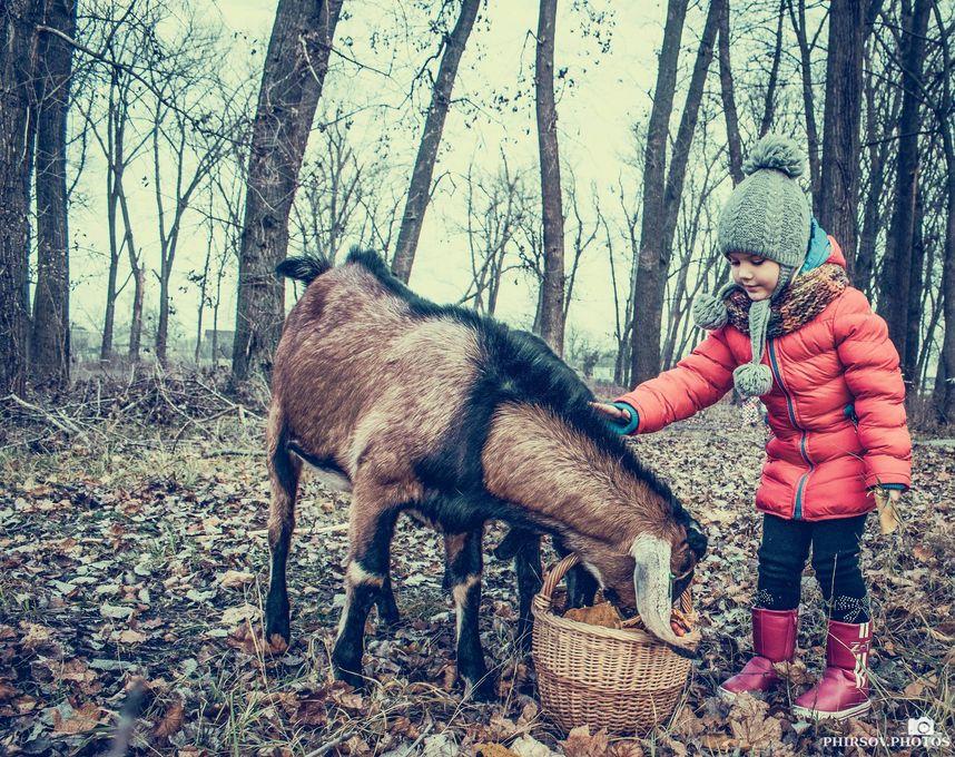 Сергей Фирсов - Фотограф  - Борисполь - Киевская область photo