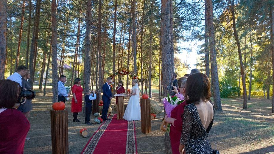 popov-aleksej - Ведущий или тамада Организация праздников под ключ  - Краснодар - Краснодарский край photo