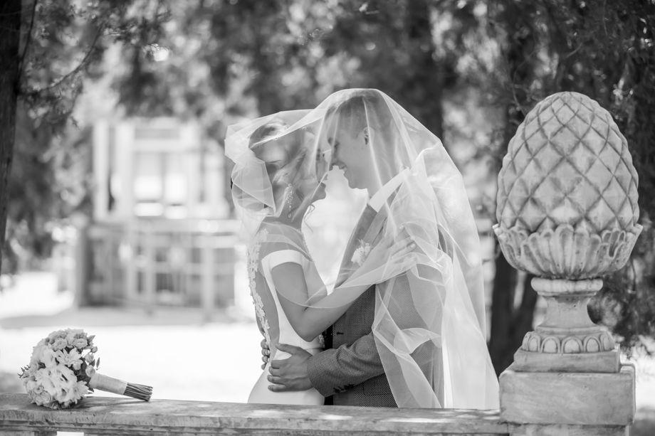 Инна Зубко - Фотограф  - Харьков - Харьковская область photo