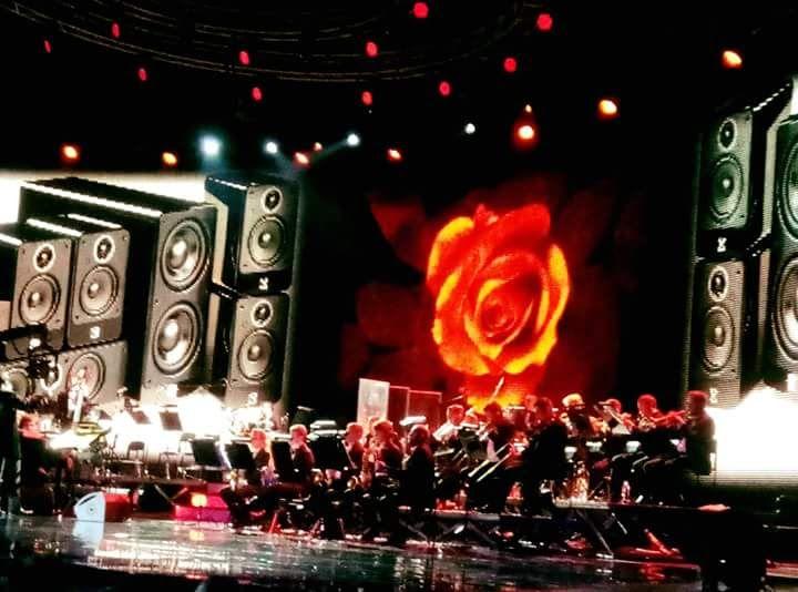 Rocket Band - Музыкальная группа Ансамбль Прокат звука и света  - Киев - Киевская область photo
