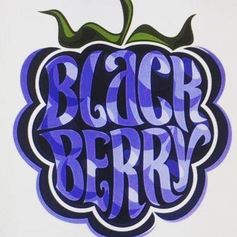Закажите выступление BlackBerry Band на свое мероприятие в Днепр