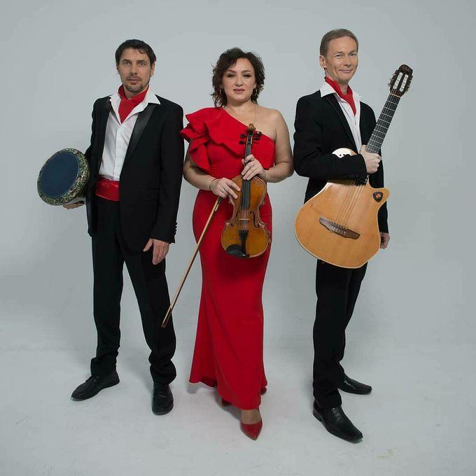 Irina-violin - Ансамбль Музыкант-инструменталист  - Одесса - Одесская область photo