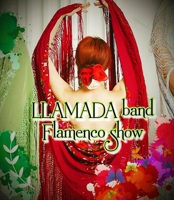 LLAMADA band - Музыкальная группа Музыкант-инструменталист  - Санкт-Петербург - Санкт-Петербург photo