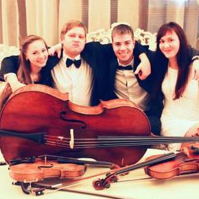 Opera string quartet - Ансамбль , Одесса,  Струнный квартет, Одесса Инструментальный ансамбль, Одесса