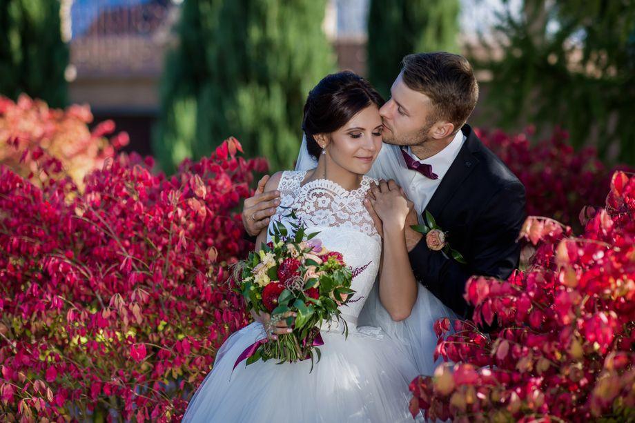 Игорь и Виктория Литвин Видеосьёмка - Видеооператор  - Киев - Киевская область photo