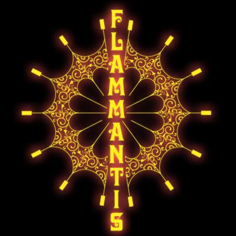 Закажите выступление Студия-огня Flammantis на свое мероприятие в Одесса