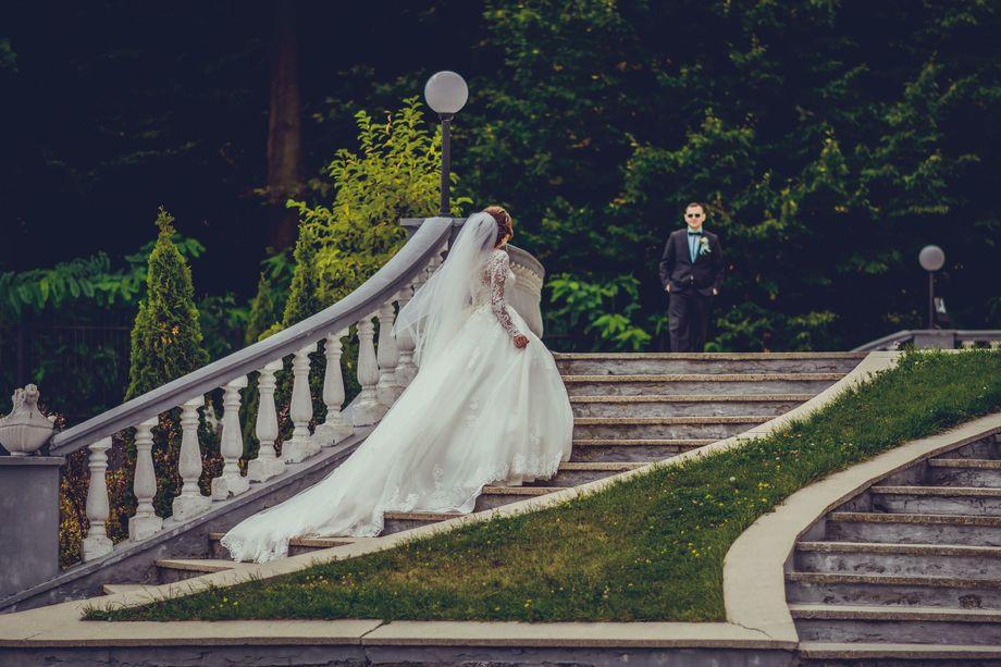 Игнаткина Юлия - Фотограф  - Винница - Винницкая область photo