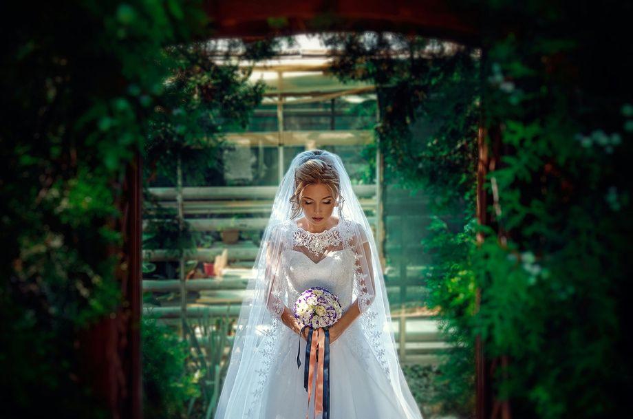 OLOVO — студия свадебной фотосъемки - Фотограф Видеооператор  - Киев - Киевская область photo