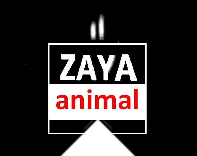 ZAYA ANIMAL - Музыкальная группа Ди-джей Певец  - Харьков - Харьковская область photo