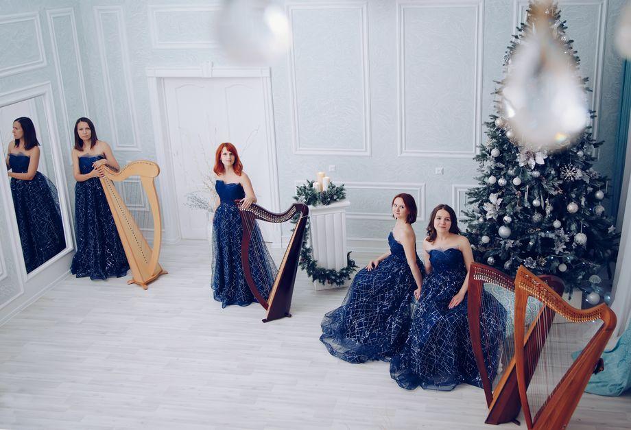 Moscow Harp Orchestra - Ансамбль Музыкант-инструменталист  - Москва - Московская область photo