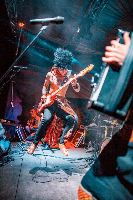 Медовий Полин - Музыкальная группа  - Тернополь - Тернопольская область photo