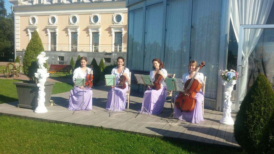 Струнный квартет La Corde - Музыкальная группа Ансамбль  - Санкт-Петербург - Санкт-Петербург photo