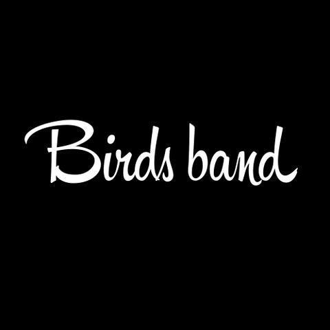 Birds band - Музыкальная группа , Санкт-Петербург,  Кавер группа, Санкт-Петербург Джаз группа, Санкт-Петербург