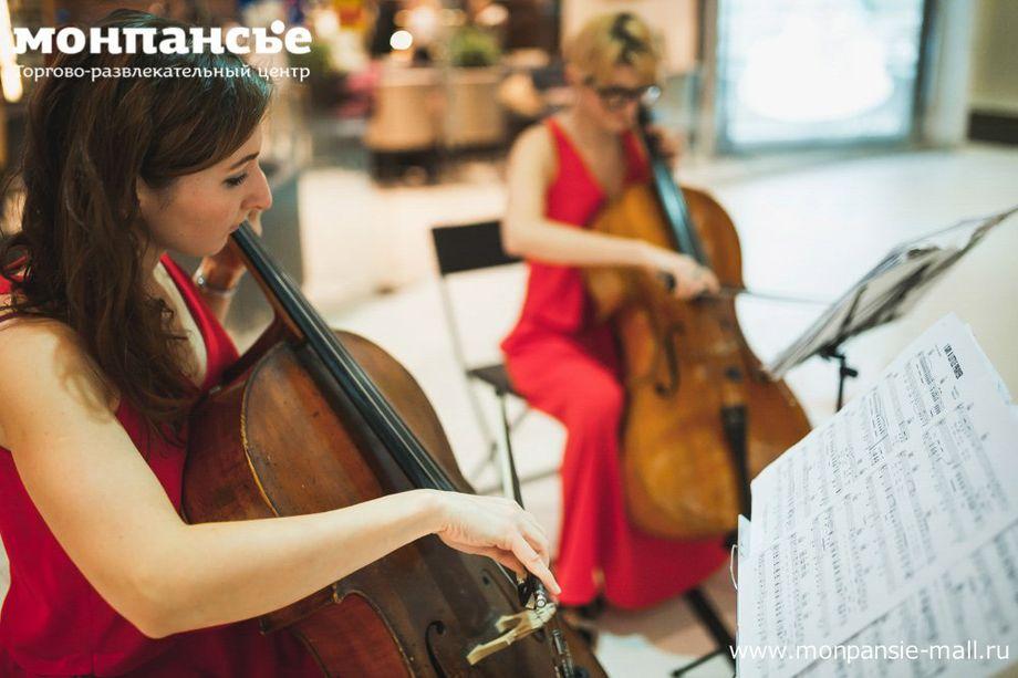 Струнный дуэт CelloTandem Виолончель-Тандем - Ансамбль Музыкант-инструменталист  - Санкт-Петербург - Санкт-Петербург photo