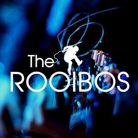 THE ROOIBOS - Музыкальная группа , Харьков, Прокат звука и света , Харьков,  Кавер группа, Харьков