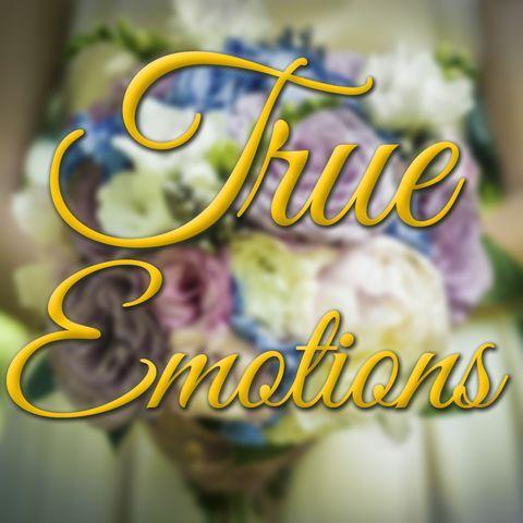 True Emotions - Видеооператор , Одесса,