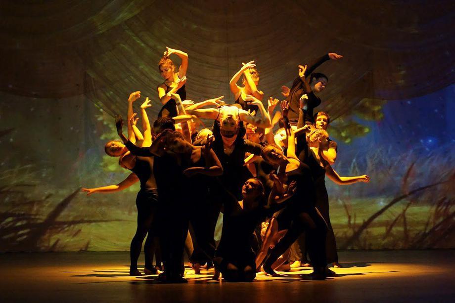 Фламинго Коллектив - Ансамбль Танцор  - Киев - Киевская область photo