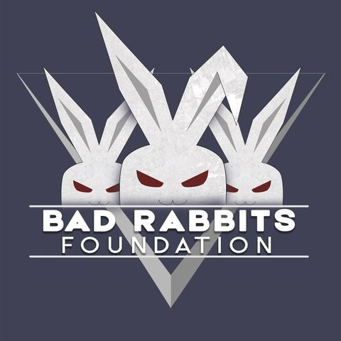 Bad Rabbits Foundation - Видеооператор , Хмельницкий,