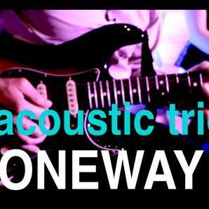 ONEWAY Acoustic trio - Музыкальная группа , Киев,  Джаз группа, Киев