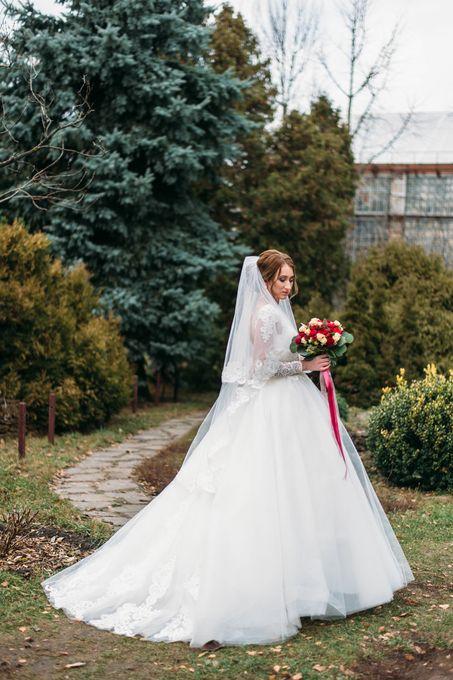 Алла Малахова - Фотограф  - Харьков - Харьковская область photo