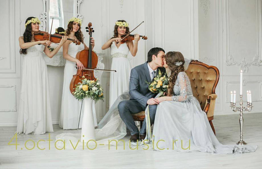 OCTAVIO - Музыкальная группа Ансамбль  - Москва - Московская область photo