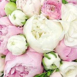 Oformi Day - Свадебная флористика , Одесса, Декорирование , Одесса,